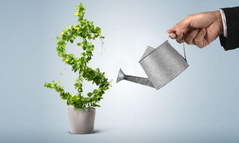 Как выбрать финансового консультанта?