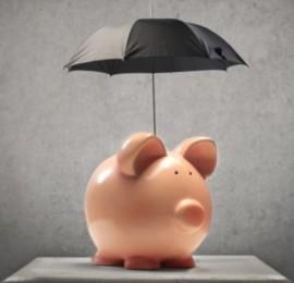 Кому доверить управление финансами?