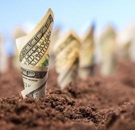 Инвестиции-в-землю